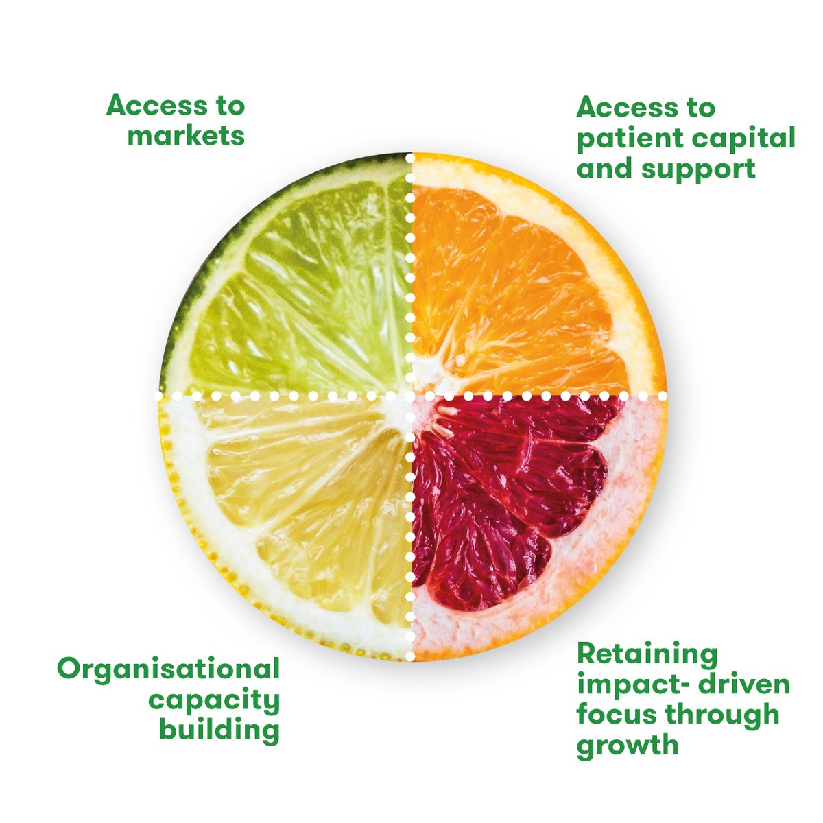 Does your food business positively impact people and planet? Apply to Impact Hub